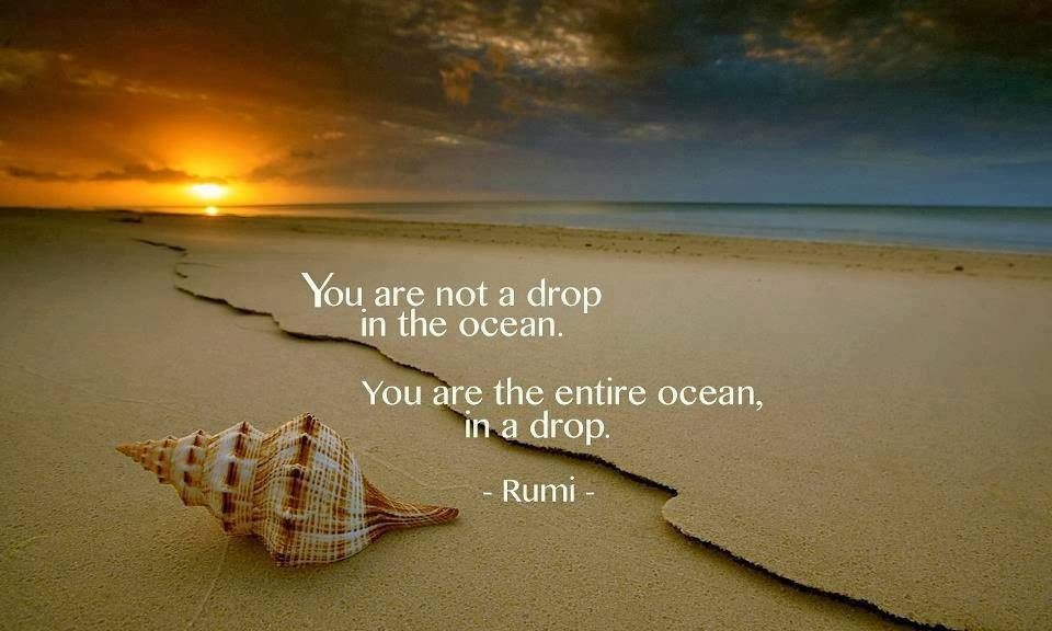 47471-you-are-not-a-drop-in-the-ocean