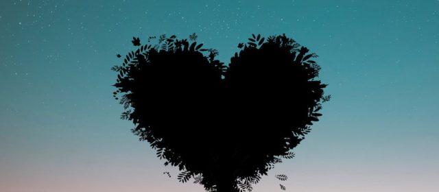 Iubirea se scrie fără virgule
